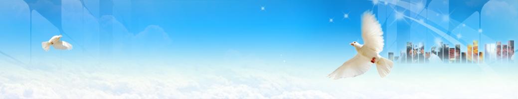 申請成為支點雲端科技的合作夥伴